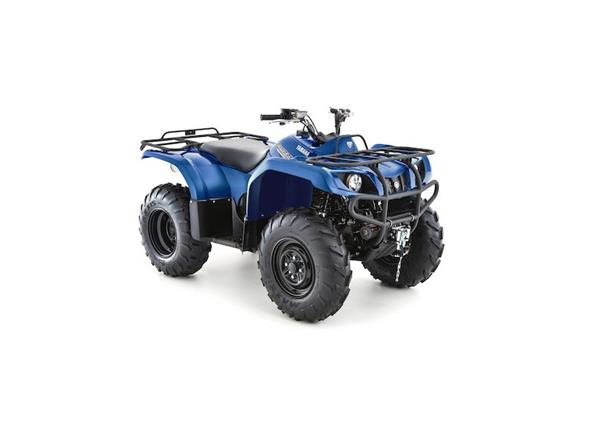 2019 Grizzly 350 2WD - Image 2
