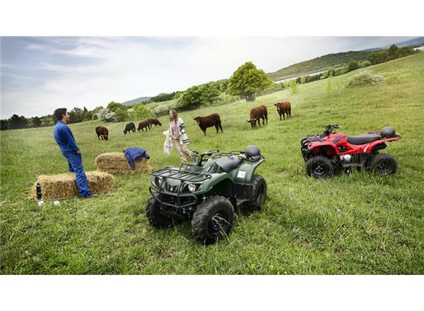2019 Grizzly 350 4WD - Image 3